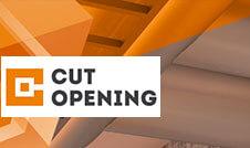 uitgelichte-afbeelding-webinar-cut-opening